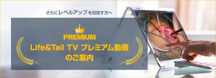 premium_TopBnr